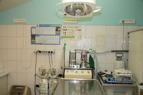 Clinique Vétérinaireà Aulnay sous bois (93)